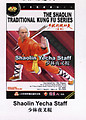 THE SHAOLIN TRADITIONAL KUNG FU SERIES - Shaolin Yecha Staff