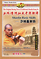 The Original Boxing Tree of Traditional Shaolin Kung Fu - Shaolin Basic Skills