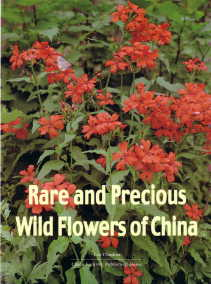 Rare and Precious Wild Flowers of China ( II ) [By:Liu Chudian]
