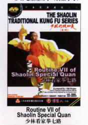 THE SHAOLIN TRADITIONAL KUNG FU SERIES - Routine VII of Shaolin Special Quan