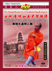 The Original Boxing Tree of Traditional Shaolin Kung Fu - Routine II of Nanyuan Big Arms-through Boxing