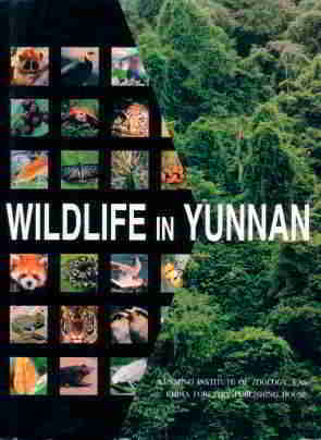 Wildlife in Yunnan of China